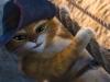 Il-gatto-con-gli-stivali-3